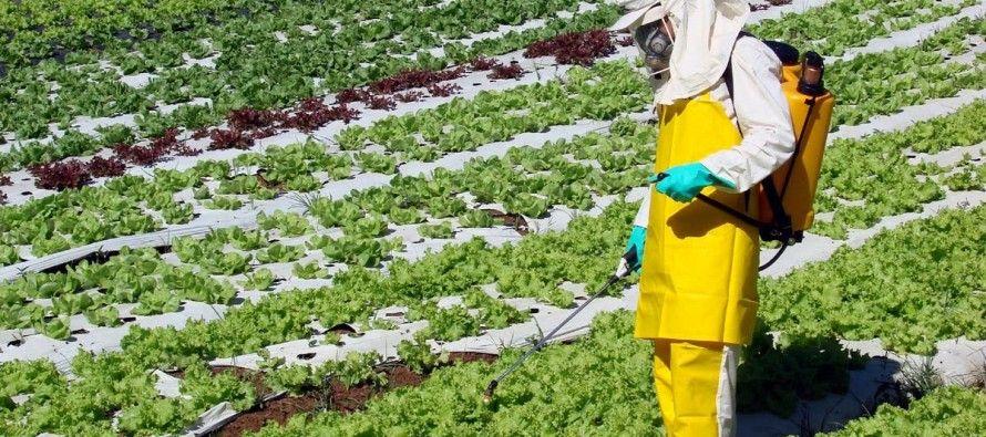 21 de maio: Marcha do mundo contra a Monsanto