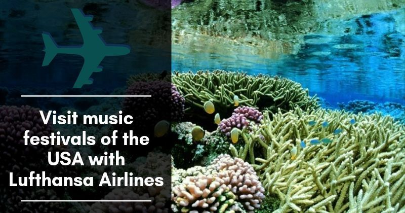 Visit music festivals of the usa with lufthansa airlines