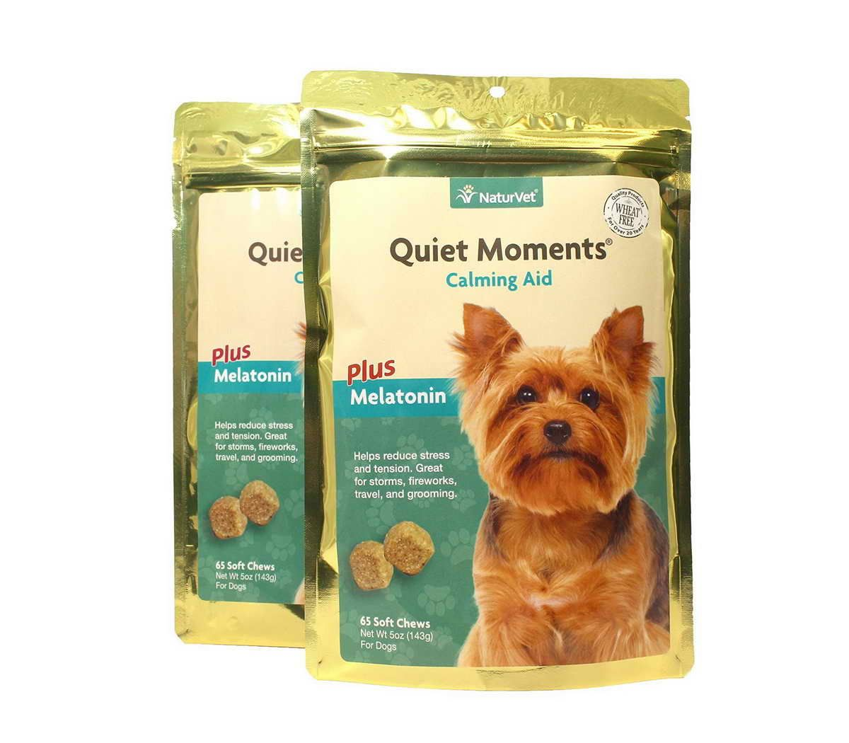 Best Dog Food For Yorkies South Africa Best Dog Food For Yorkies Dogs