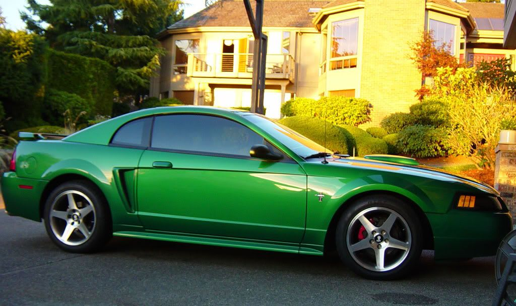 a 2002 mustang wearing this electric green pearl click the image to open in full size here 39 s. Black Bedroom Furniture Sets. Home Design Ideas