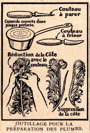 Rétro 1925: La préparation des plumes pour parures