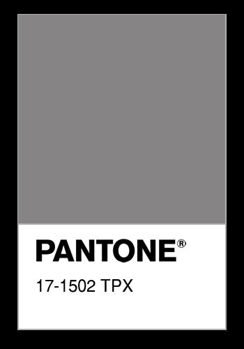 Resultado de imagen de pantone TPX 17-1502