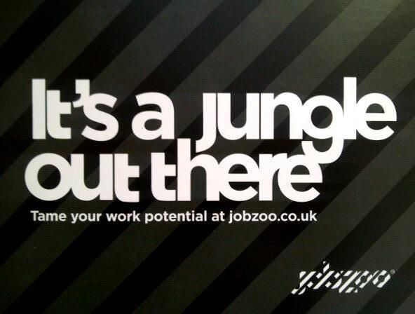 JobZoo 2012 - Present Editor and Social Media Manager for a - social media manager job description