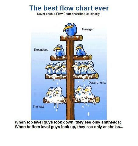 The Corporate Flow Chart