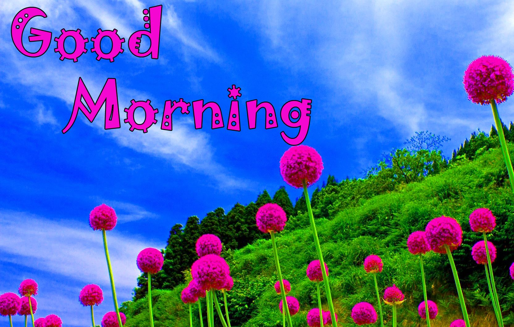 1194 Good Morning Images Hd Wallpaper Pics For Whatsapp Good Morning Images Good Morning Wallpaper Good Morning Photos