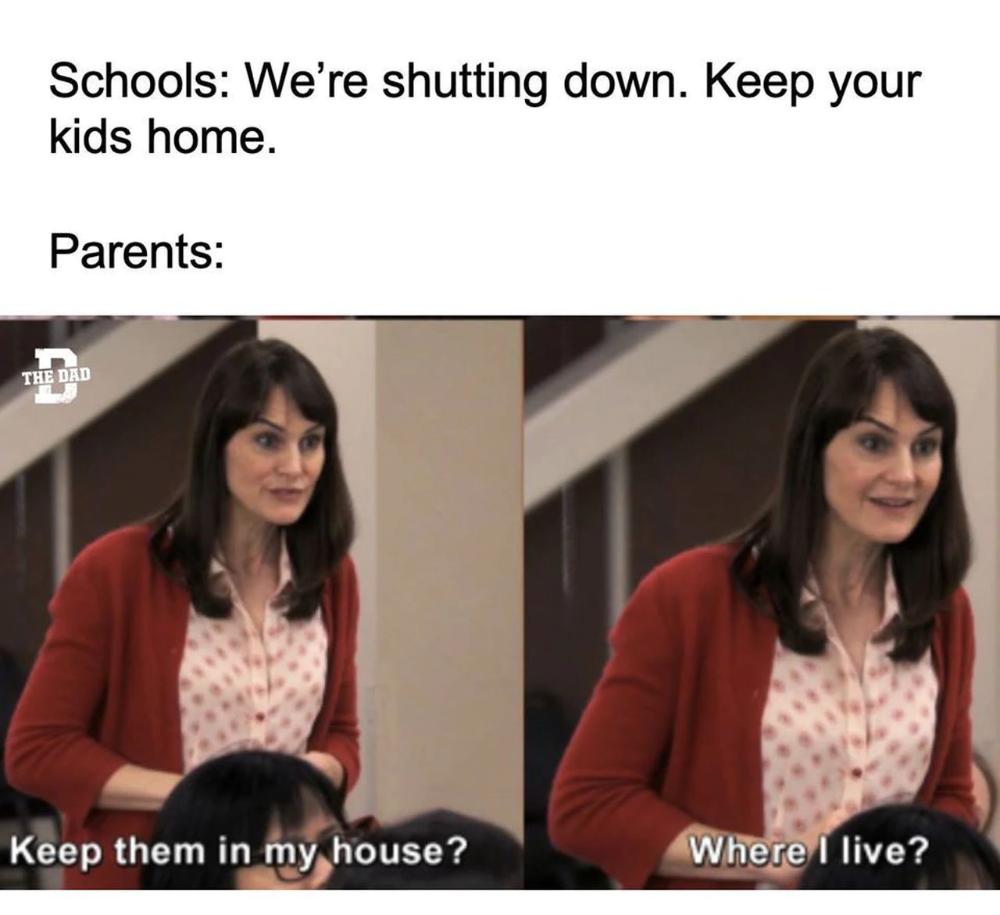 Coronavirus moment of levity, part II: Homeschooling memes and more