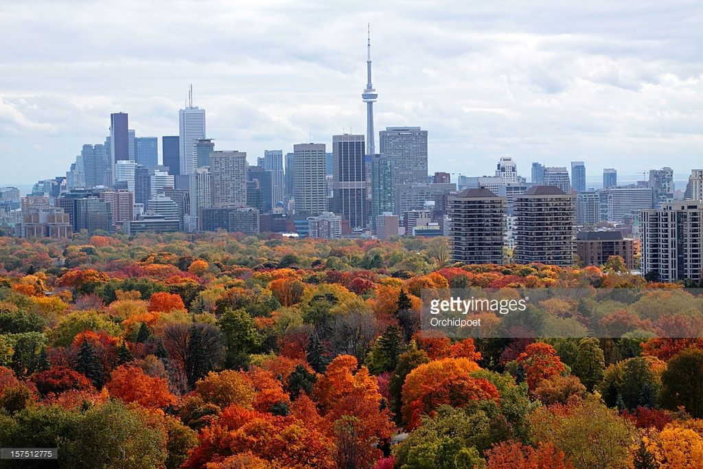 Stock Photo : Toronto In Autumn