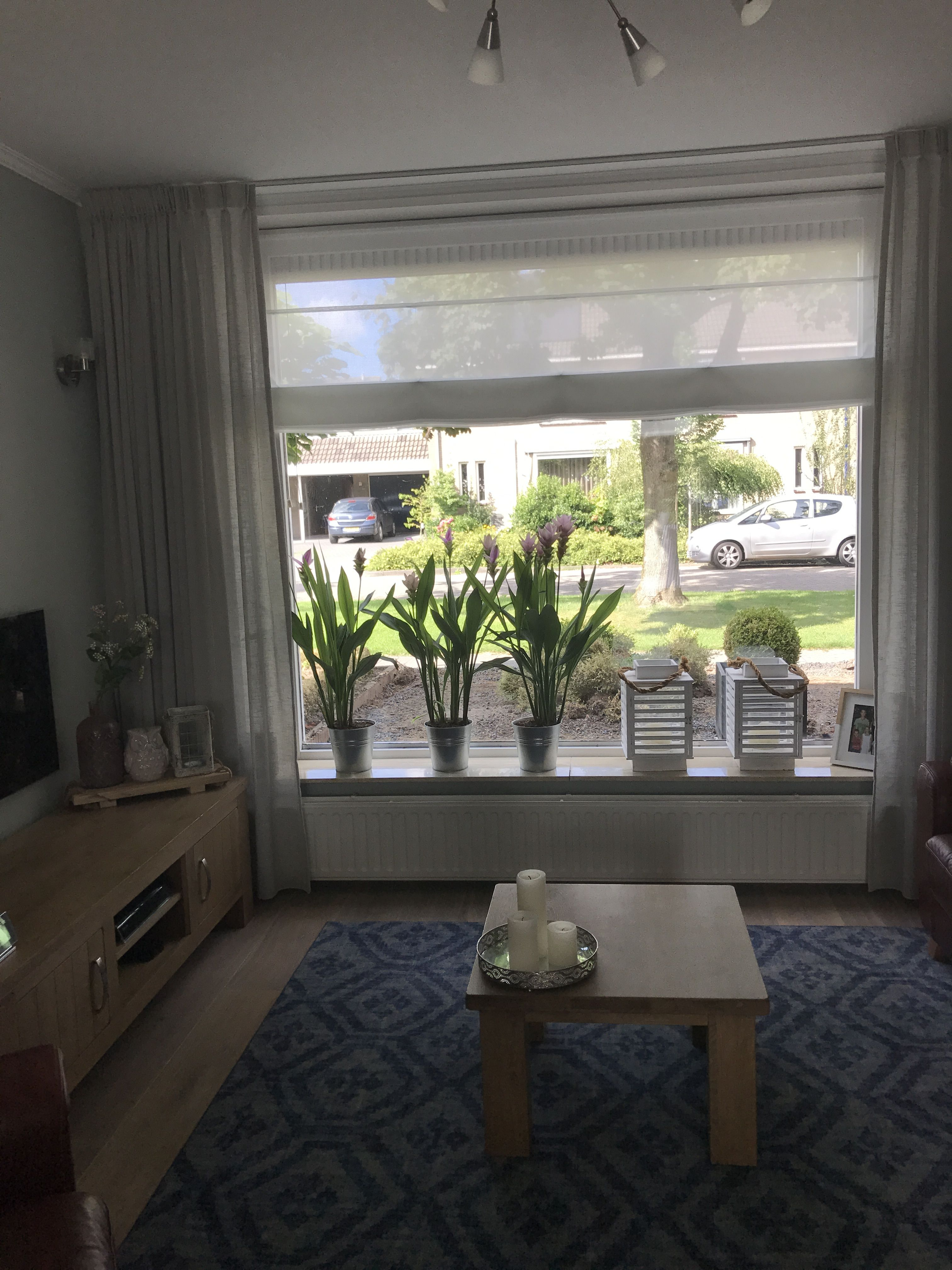 Planten op vensterbank tegen inkijk, vouwgordijnen wit, luchtige ...