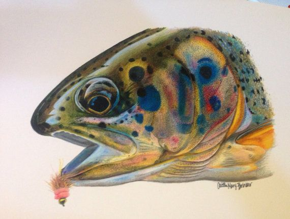 Colored Pencil Rainbow Trout Limited Edition by Passionfortrout