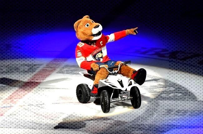 Florida Panthers vs. Minnesota Wild - 12/3/19 NHL Pick, Odds, and Prediction - Pick Dawgz