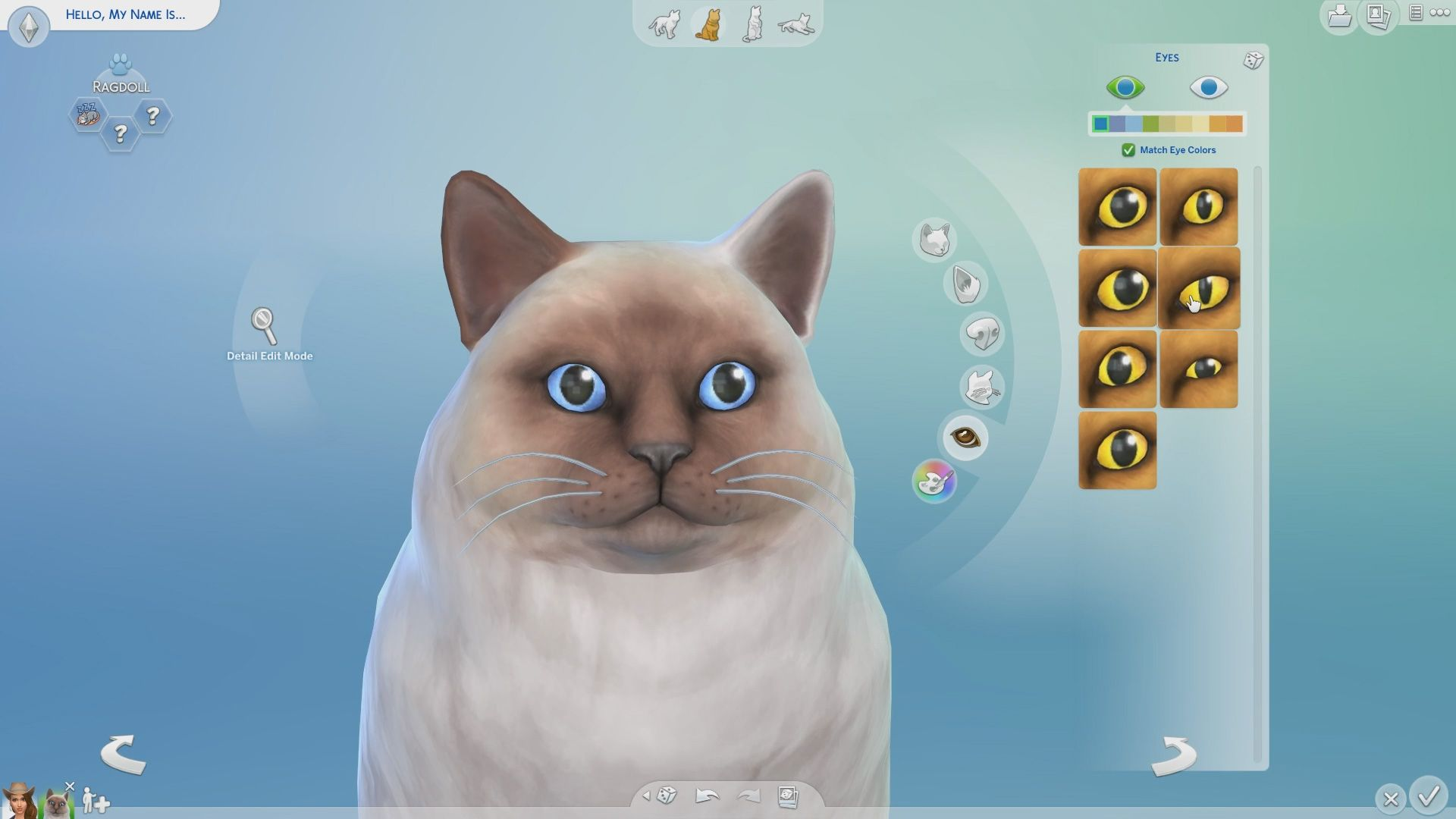 How To Create A Pet In The Sims 4 Sims 4 Sims Pets