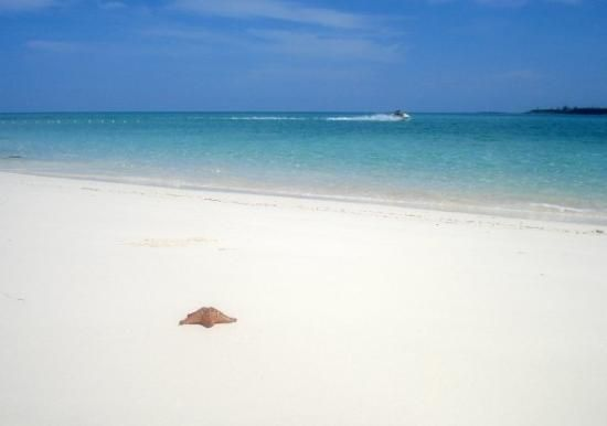 Cable Beach Picture Of Nau Tripadvisor