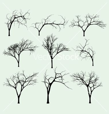 Set of silhouettes of trees vector on VectorStock  Trees