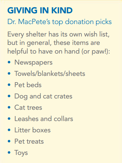Considering Donating To Your Local Animal Shelter While All