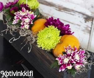 Halloweenin kauniimmat koristeet. Puulaatikkoon tehty asetelma sopii vaikkapa ruokapöydän keskipisteeksi tai sivupöytää koristamaan. Matalassa asetelmassa loistavat eriväriset krysanteemit ja koristekurpitsat.