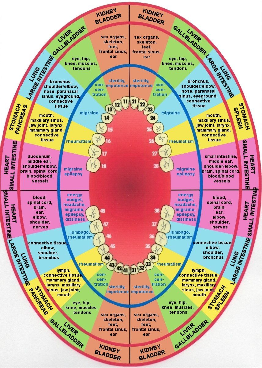 Tooth Body And Disease Linked Chart