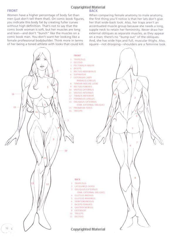 Pin de yu0403200 en Lineart | Pinterest | Anatomía, Dibujo y ...