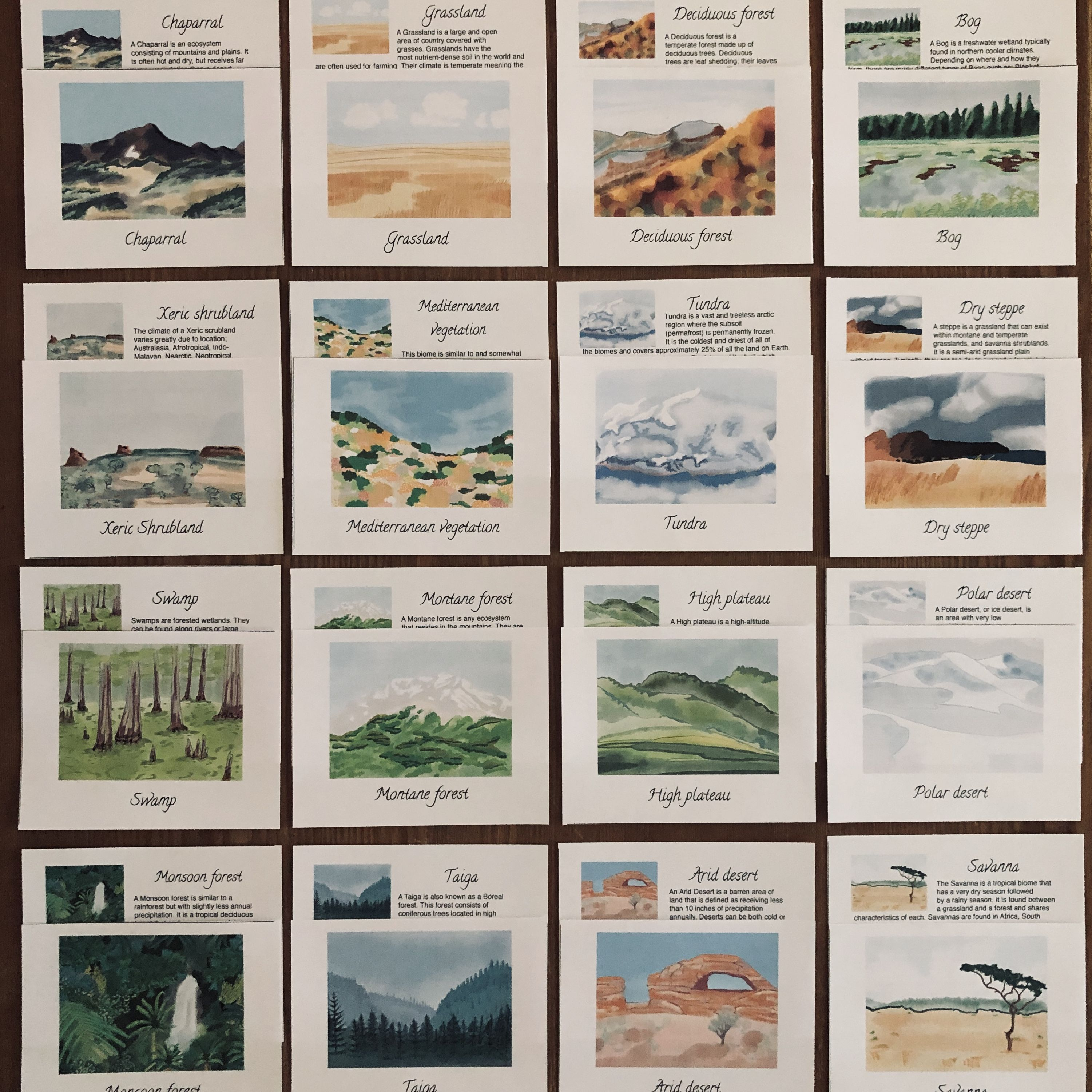 Biomes Collection