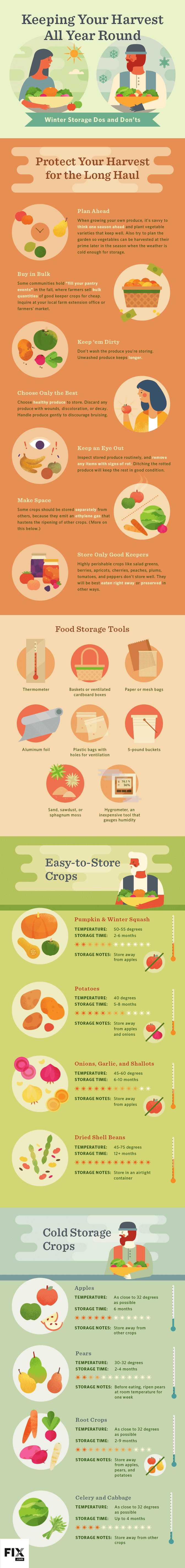 Keeping Your Harvest All Year Round Winter Storage Dos and Don'ts #infographic