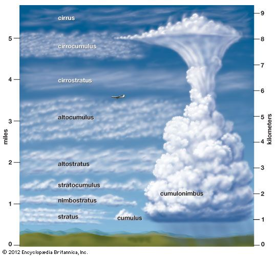 Art Different Types Of Clouds Form At Different Heights Meteorology Cloud Type Clouds