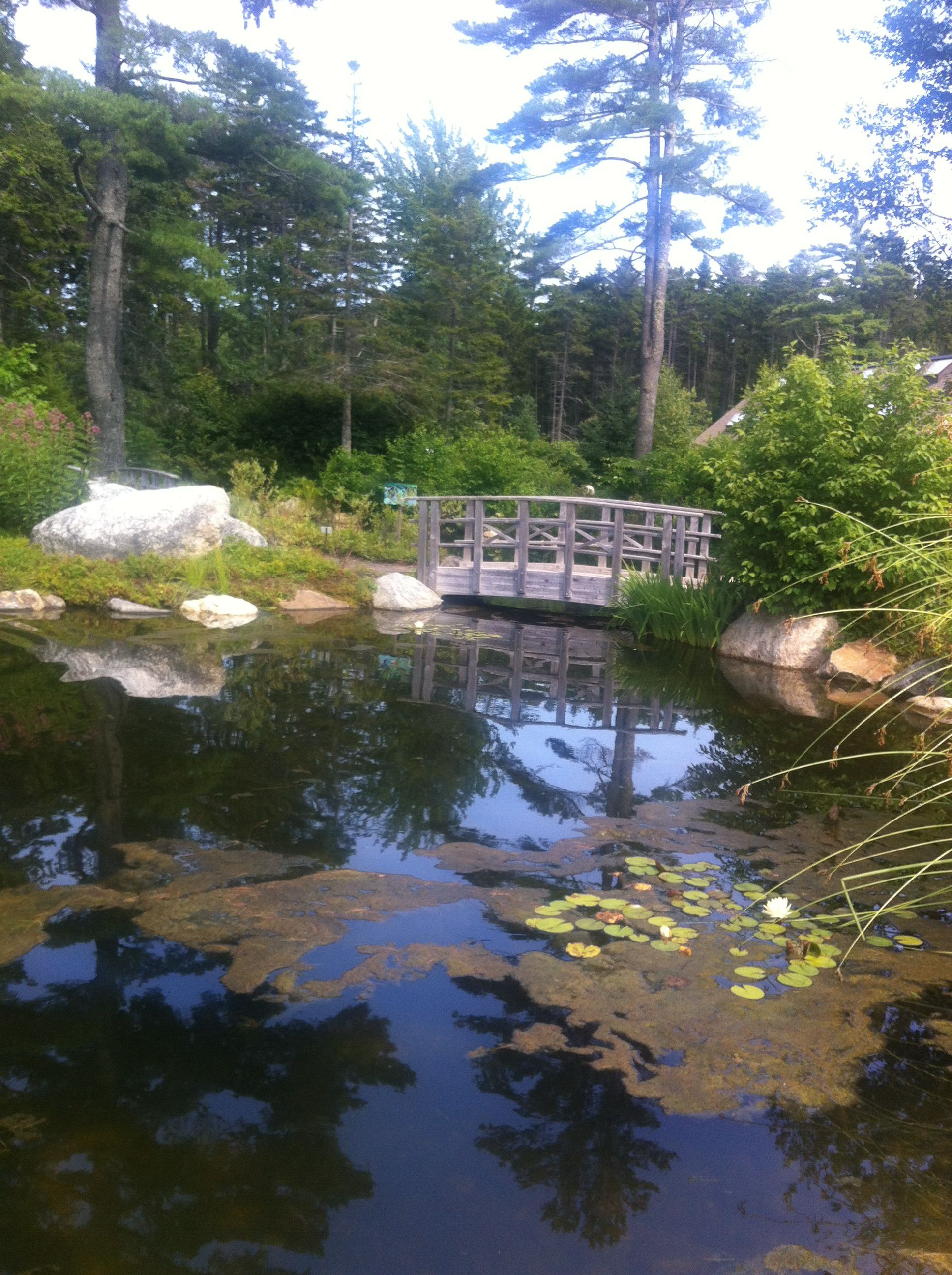 The boothbay botanical gardens, maine