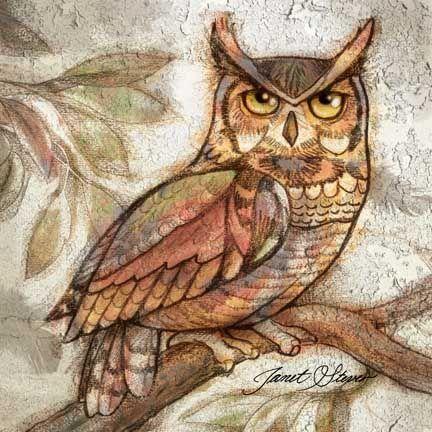 Earth Owl IV -  by Janet Stever