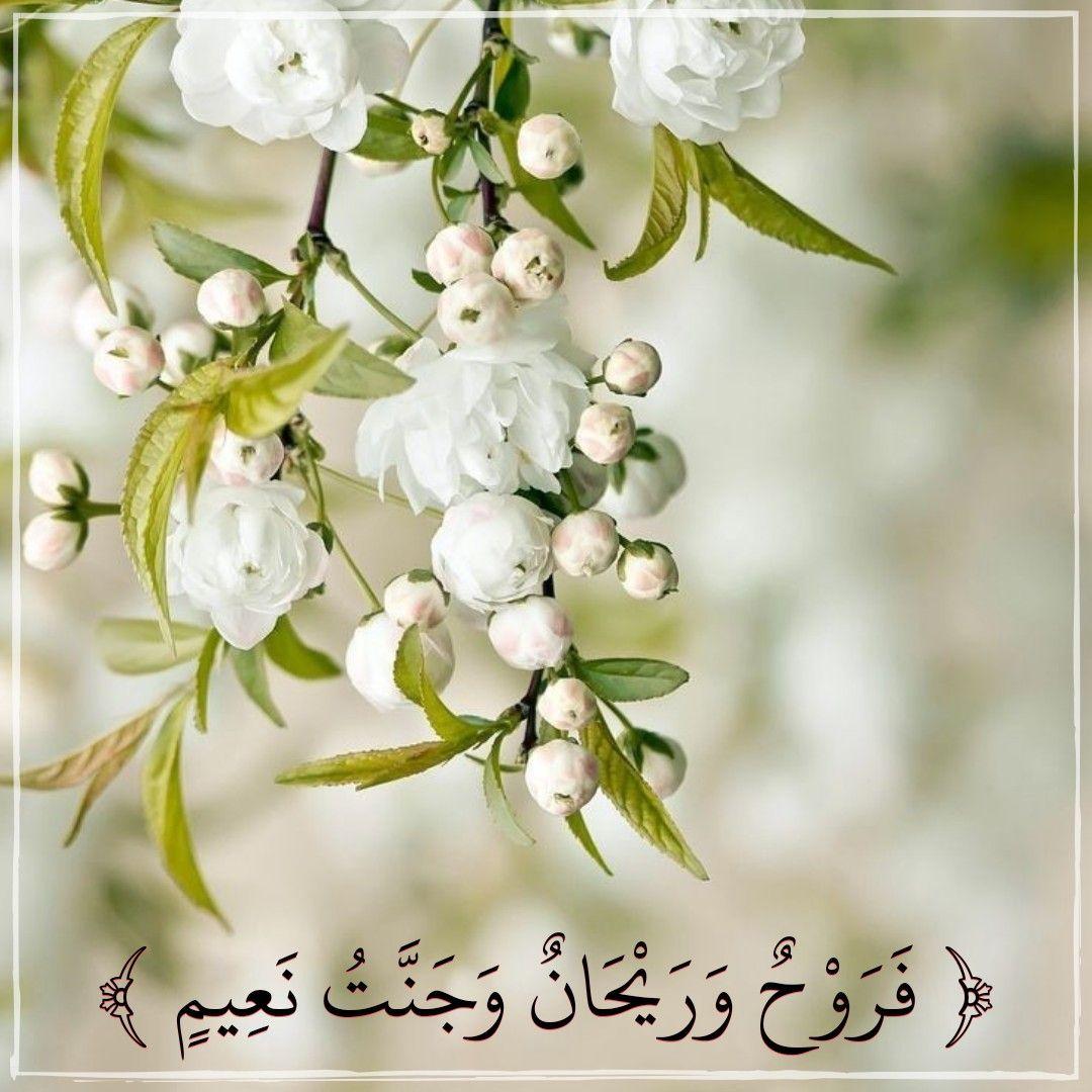 قرآن كريم آية فروح وريحان وجنه نعيم Prayer For The Day Quran Prayers