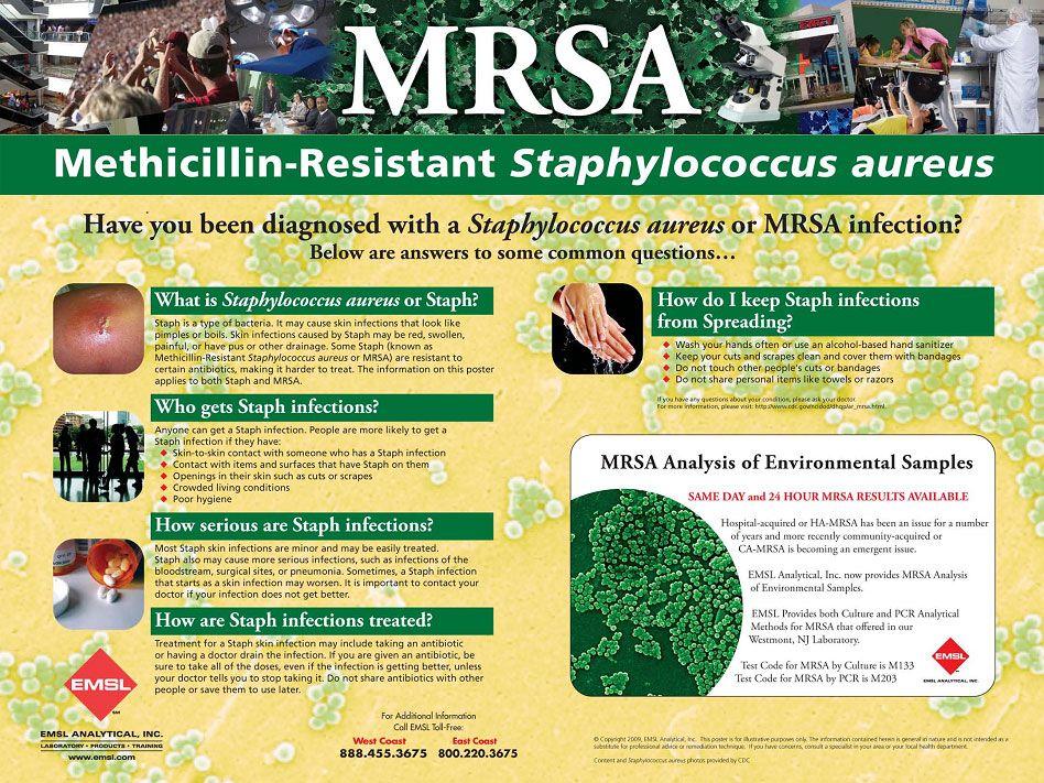 Image result for microbiology research poster | INBRE | Pinterest ...
