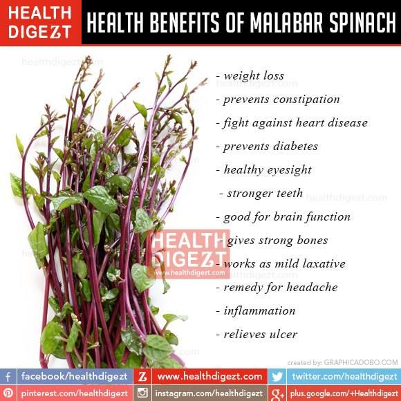 Benefits of Malabar Spinach | Healthy Food