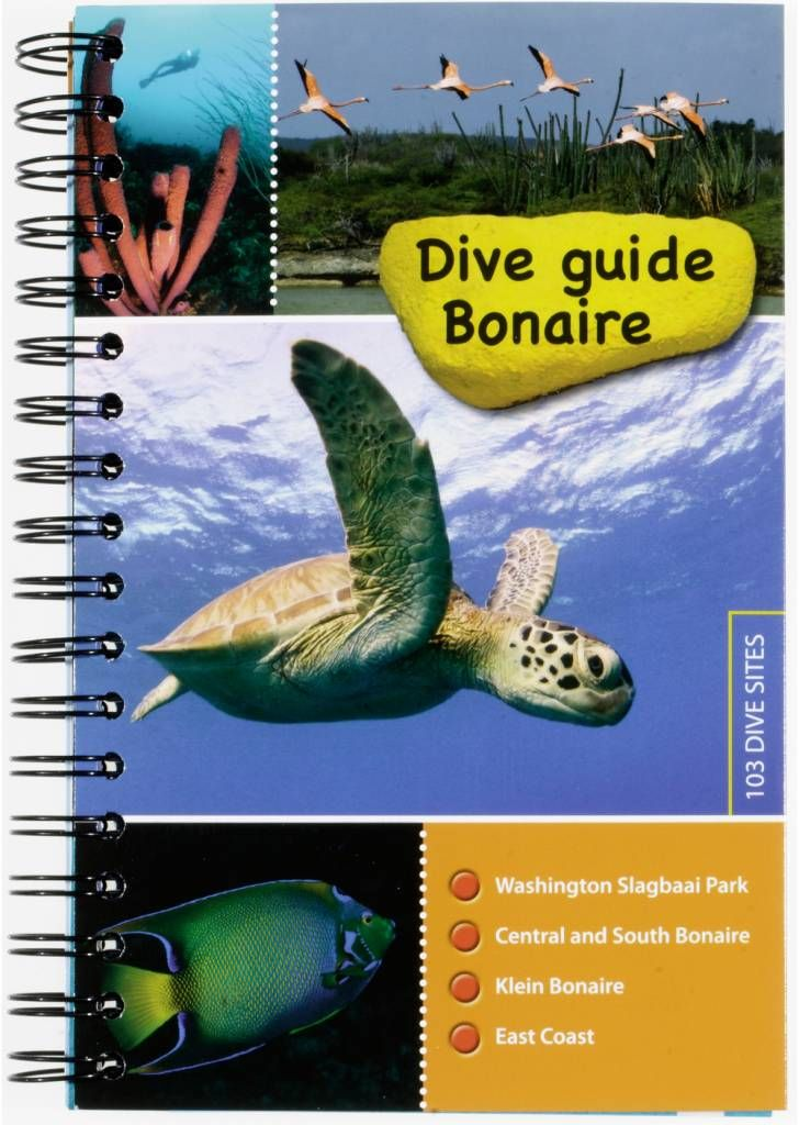 Dive guide Bonaire (English edition) - GoDolphins.nl