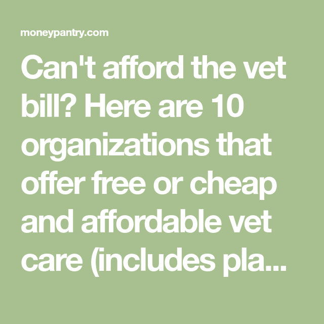 Pin by 1800PetsAndVets® on 1800PetsAndVets® Street dogs