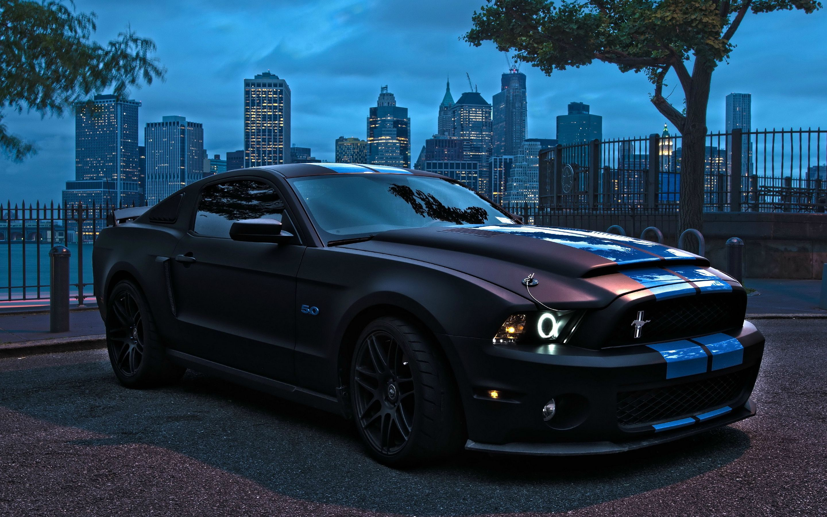 2016 Ford Mustang Shelby Gt 500 Imgur