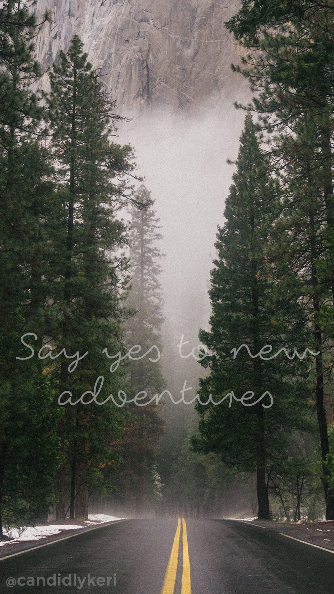 say yes to new adventures forest fog wallpaper you can download for free on the blog