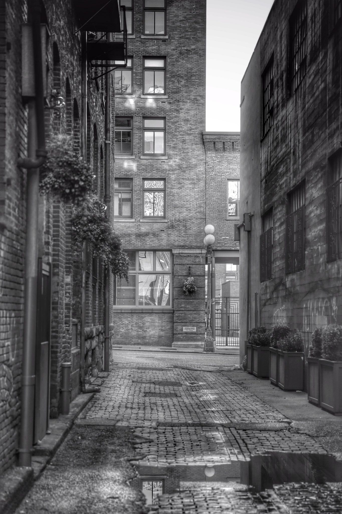Alley ~ Photo by...Kevin Kurbs©