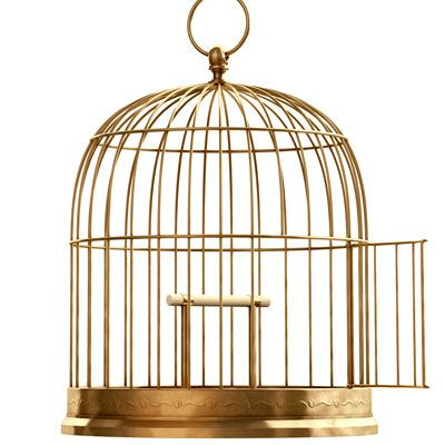 Human Sized Cage Google Search Vintage Bird Cage Bird Cage Vintage Birds