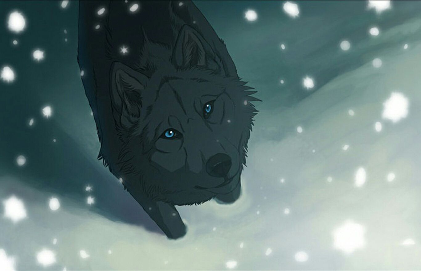 Memy Z Anime Wolf S Rain Anime Wolf Rain Wallpapers