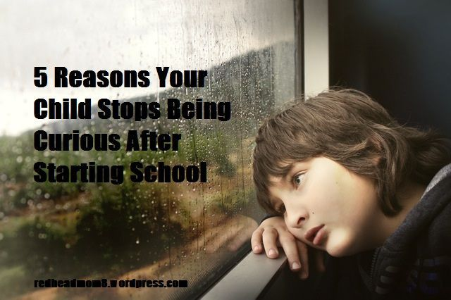 5 Reasons Your Child Stops Being Curious After Starting School
