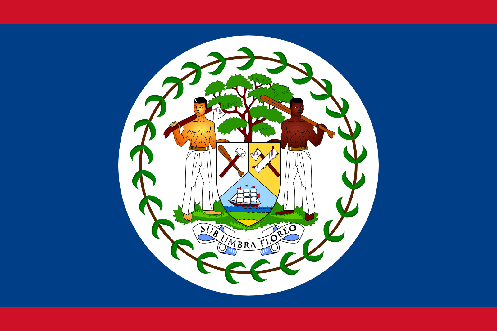 Belize Newspapers And News Sites Online Belize Flag Flag Belize Country