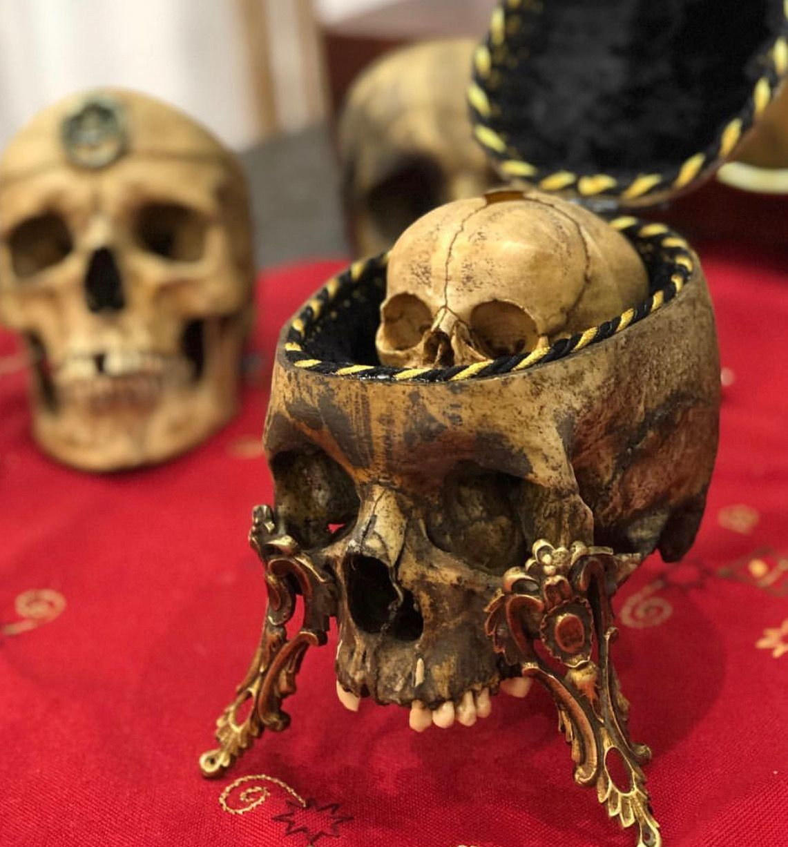 Pin by MASTER THERION on Skull and Bones Skull and bones