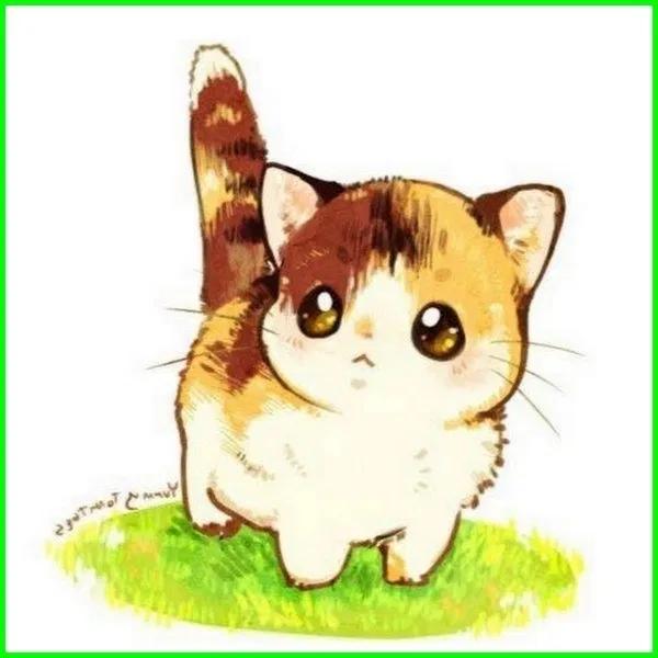 5000 Gambar Kucing Lucu Imut Dan Paling Menggemaskan Di 2020 Gambar Kucing Lucu Kartun Kucing Lucu