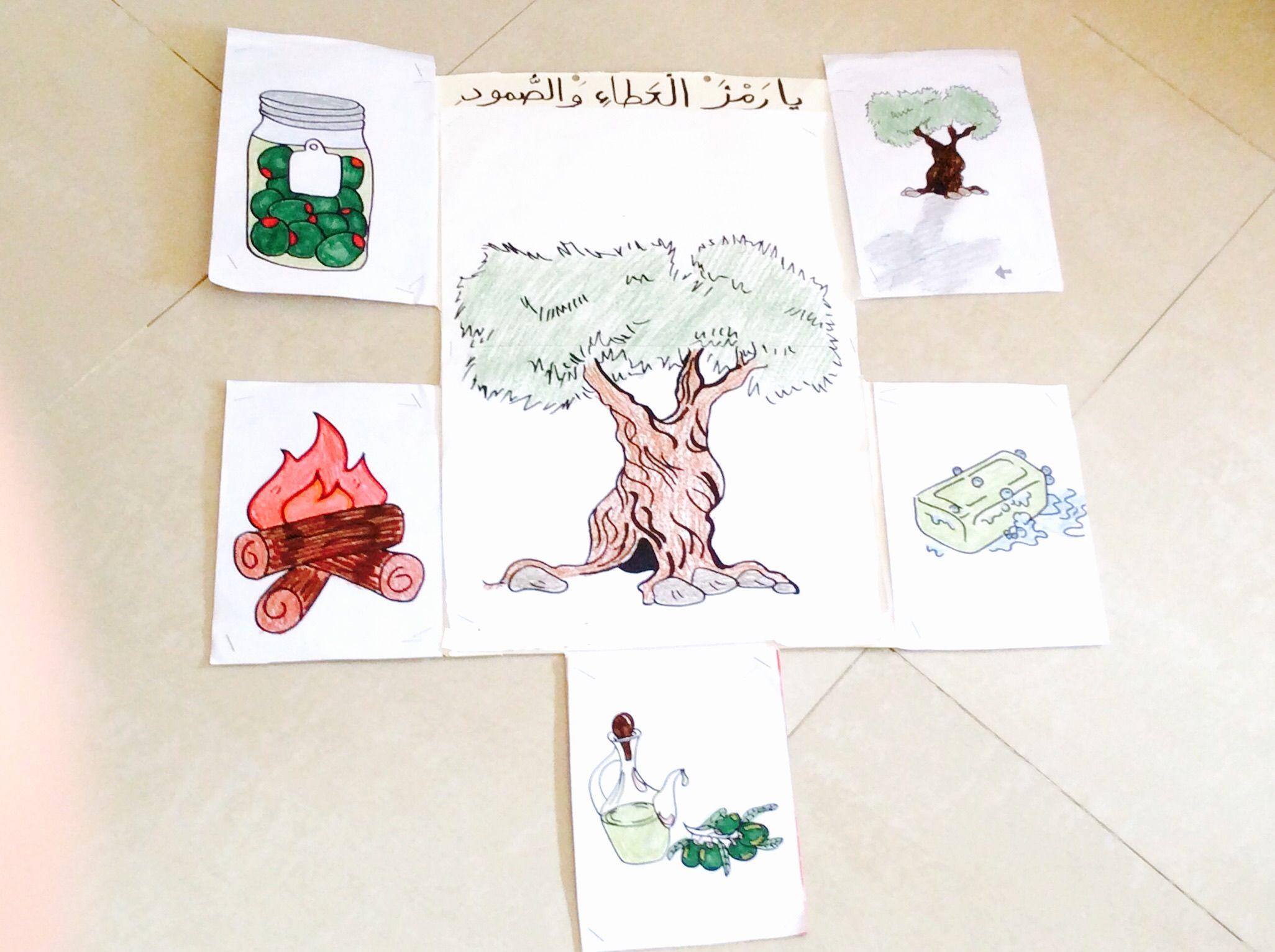 لوحة للاطفال عن فوائد شجرة الزيتون Poster For Kids School Project About The Benefits And Uses Of Olive Trees Cards Flowers
