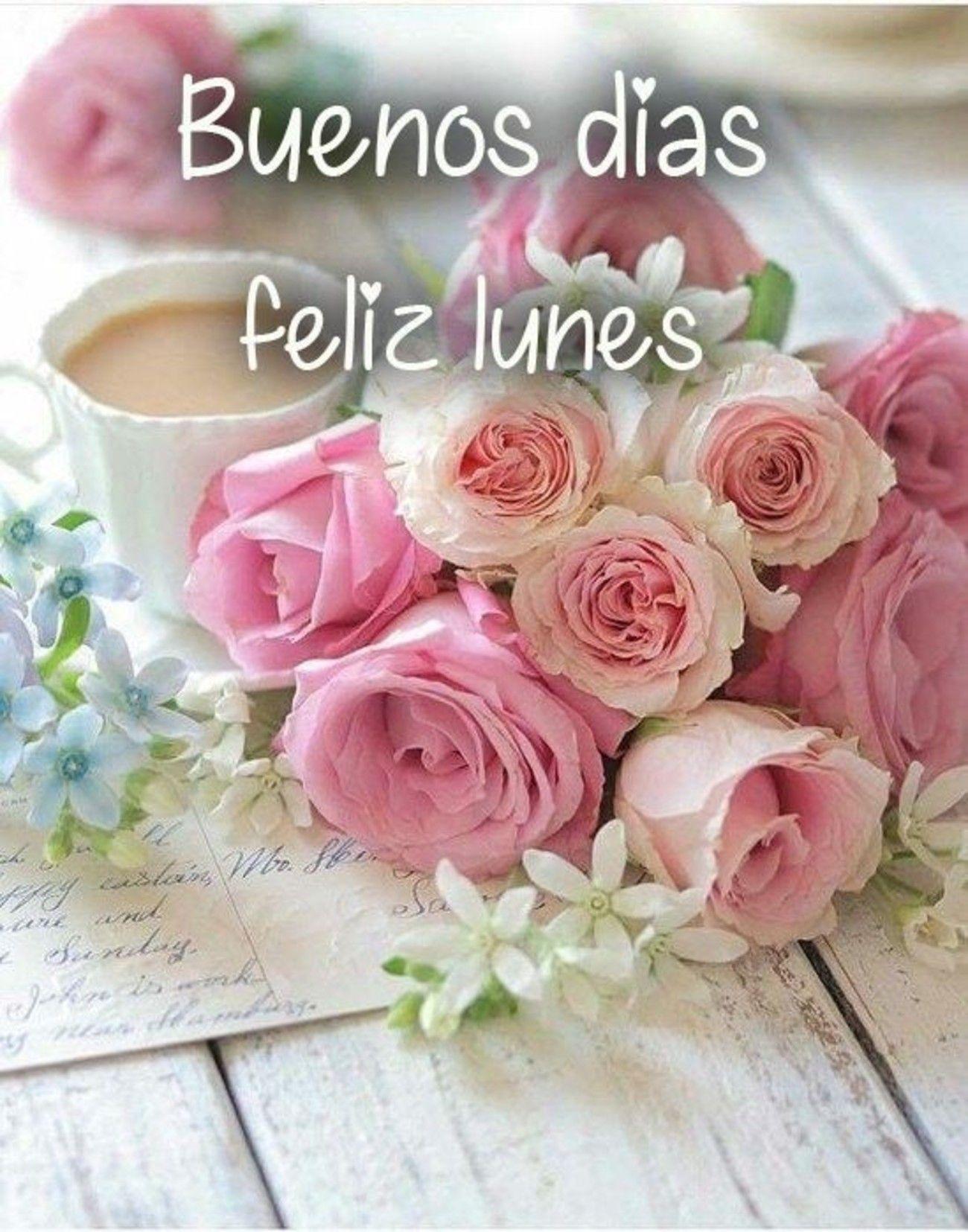 Feliz Lunes imágenes para WhatsApp - BonitasImagenes.net   Buenos dias  feliz lunes, Imagenes de feliz lunes, Feliz lunes