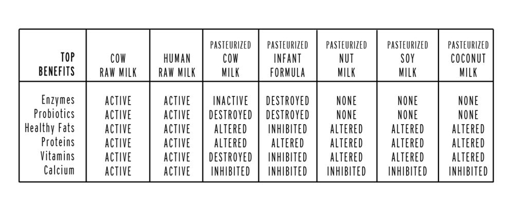 Pasteurized A2 Milk vs. Raw Dairy Products | Coconut ...