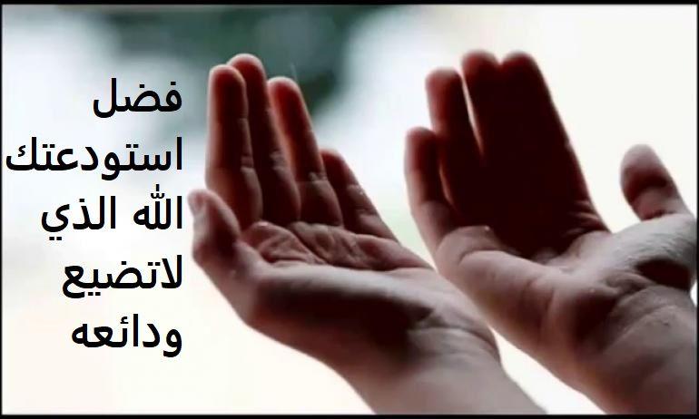 فضل استودعتك الله الذي لاتضيع ودائعه موسوعة طيوف Love Quotes Arabic Words Arabic Quotes