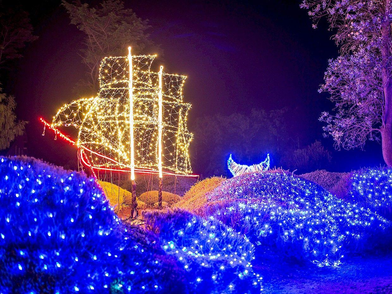 74243609c51f4b62741ca2ff20c51ca2 - Festival Of Lights Mendocino Coast Botanical Gardens