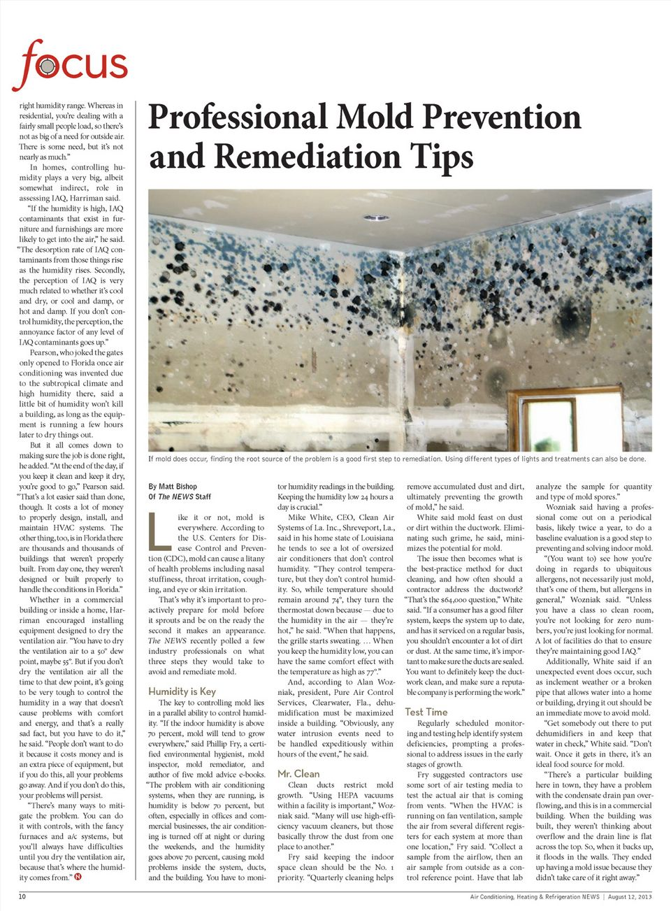 Professional Mold Prevention and Remediation Tips Mold