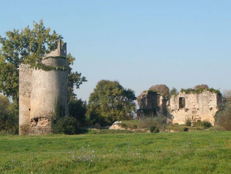 Ruines du château de Machecoul