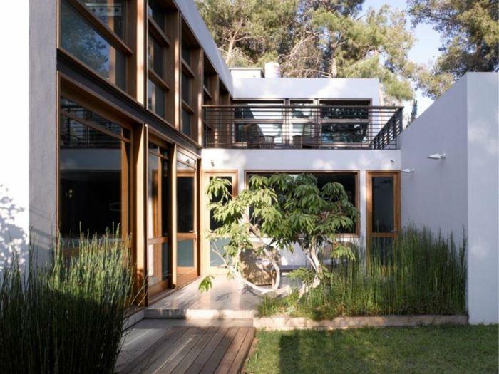 Ein Kleiner Baum Im Garten Mit Hohen Gras Und Rasen Moderne Gartengestaltung