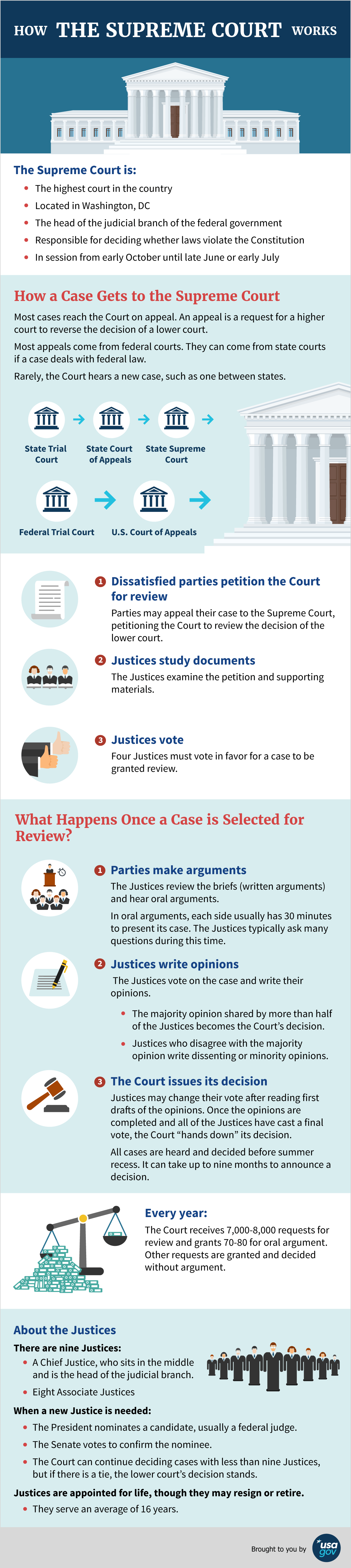 How The Supreme Court Works Infographic See Description