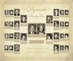 photo family trees i really love this example family tree